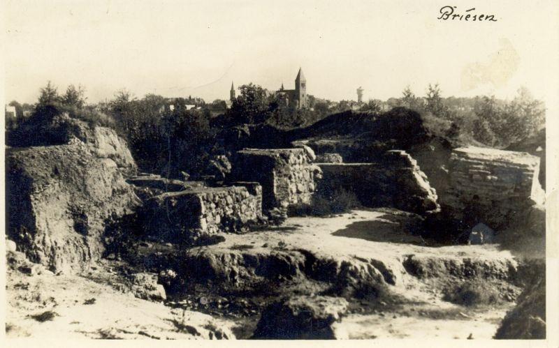 Ruiny Zamku Biskupiego