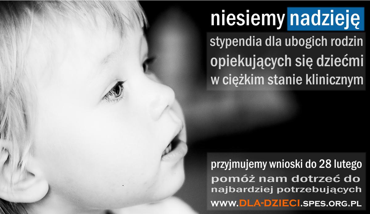 plakat - stypendia 2013