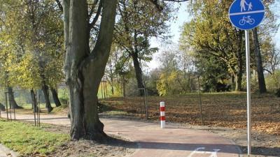 Nowe drzewka przy ul. Wolności