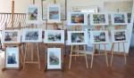 Wystawa fotograficzna Katarzyny Piłt w galerii WDK czynna będzie do 31 lipca 2018 r (6)