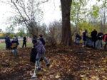 Uczniowie SP 2 w Wąbrzeźnie zbierają liscie kasztanowców,by je spalić wraz z poczwarkami szrotówka kasztanowcowiaczka. Listopad 2018 r.Fot. SP 2(6)