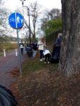 Uczniowie SP 2 w Wąbrzeźnie zbierają liscie kasztanowców,by je spalić wraz z poczwarkami szrotówka kasztanowcowiaczka. Listopad 2018 r.Fot. SP 2(8)