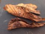 Uczniowie SP 2 w Wąbrzeźnie zbierają liscie kasztanowców,by je spalić wraz z poczwarkami szrotówka kasztanowcowiaczka. Listopad 2018 r.Fot. SP 2(9)