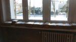 Szkoła Podstawowa nr 3 po raz siedemnasty aktywnie uczestniczyła w ogólnopolskiej akcji Góra Grosza (4)