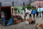 Wąbrzeźno.Festyn ekologiczny i rozstrzygnięcie konkursu Kasztany zbieramy, bo zwierzęta kochamy- 4.10.2019r. 9