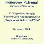 HP-007-WDK-Wąbrzeski-Mikrofon