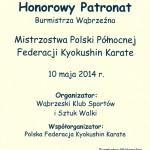 HP_2014_003_WKSiSW